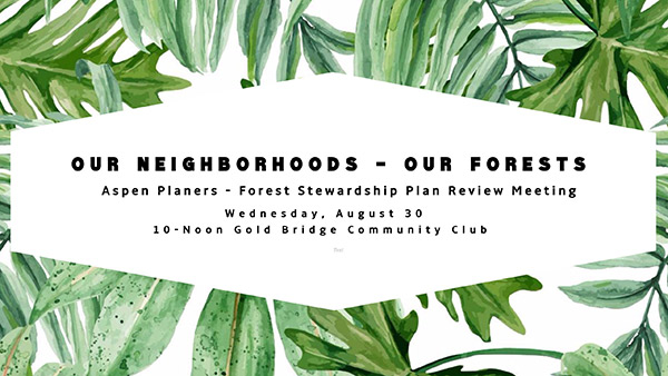 OurNeighborhoods-OurForests